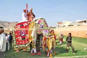 elephantfestival1
